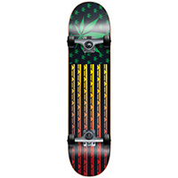 Blind High Roller Rasta Complete Skateboard 7.75