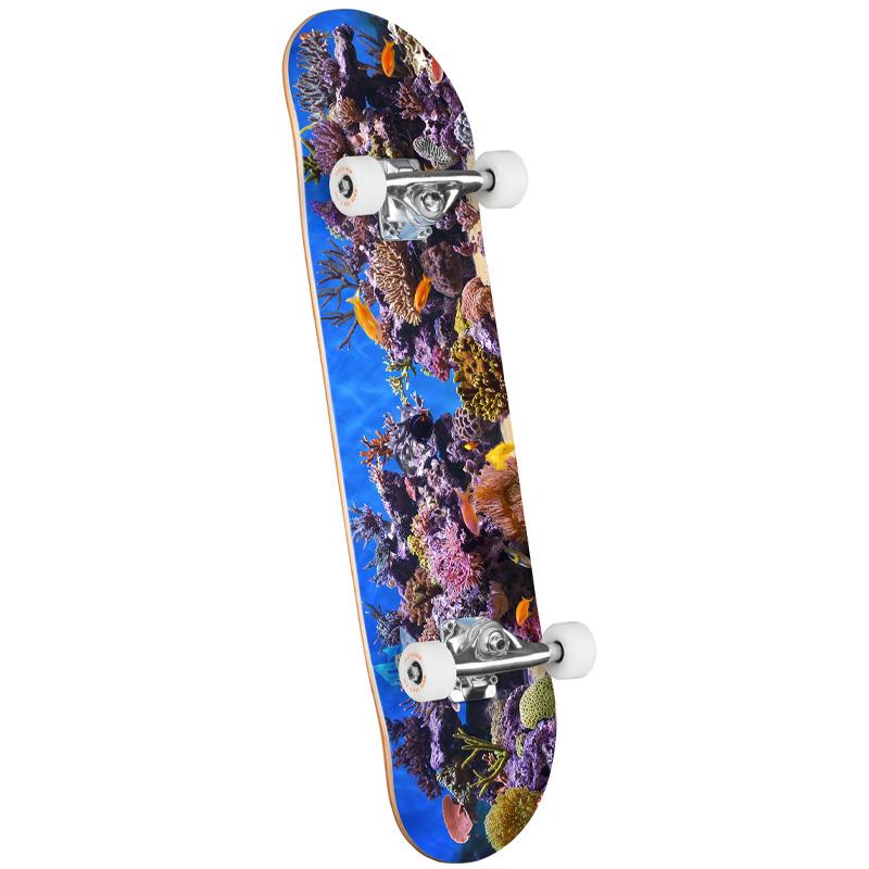Mini Logo Fish Tank 18 Complete Skateboard Shape 243 8.25