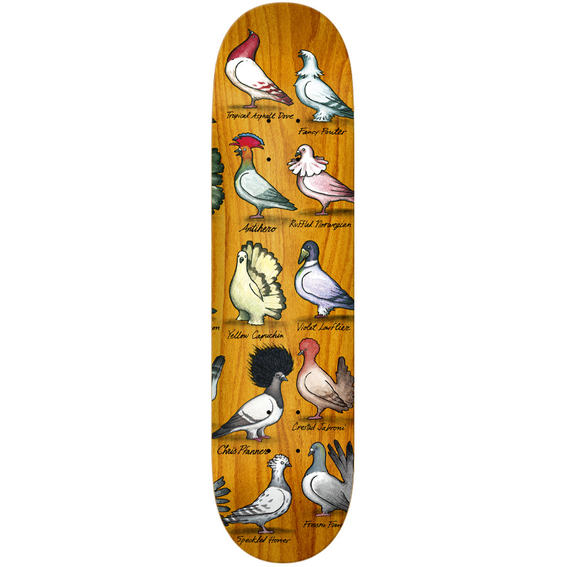 Anti Hero Pfanner Show Pigeons Skateboard Deck Multi 8.06