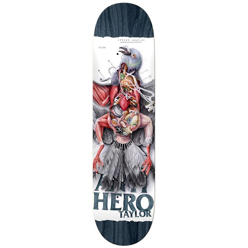 Anti Hero Taylor Street Anatomy Skateboard Deck 8.5