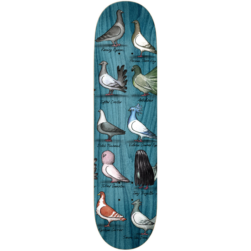 Anti Hero Trujillo Show Pigeons Skateboard Deck Multi 8.5