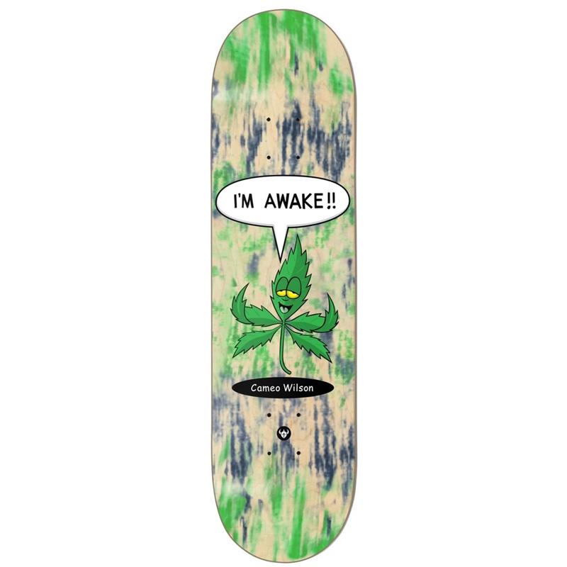 Darkstar Wilson Awake R7 Skateboard Deck 8.25
