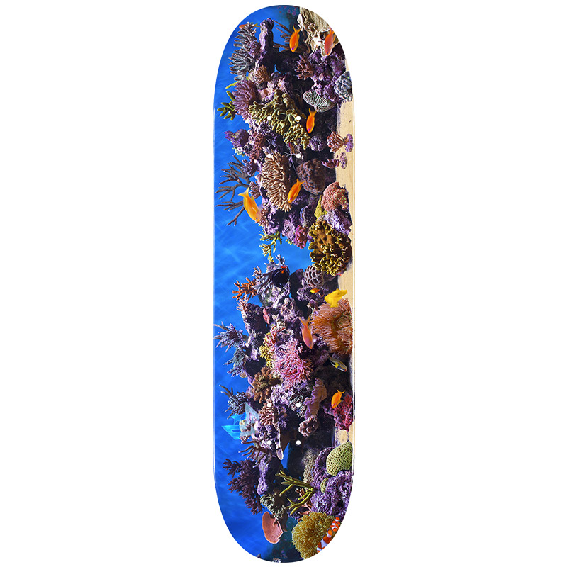 Mini Logo Fish Tank 18 Skateboard Deck Shape 243 8.25