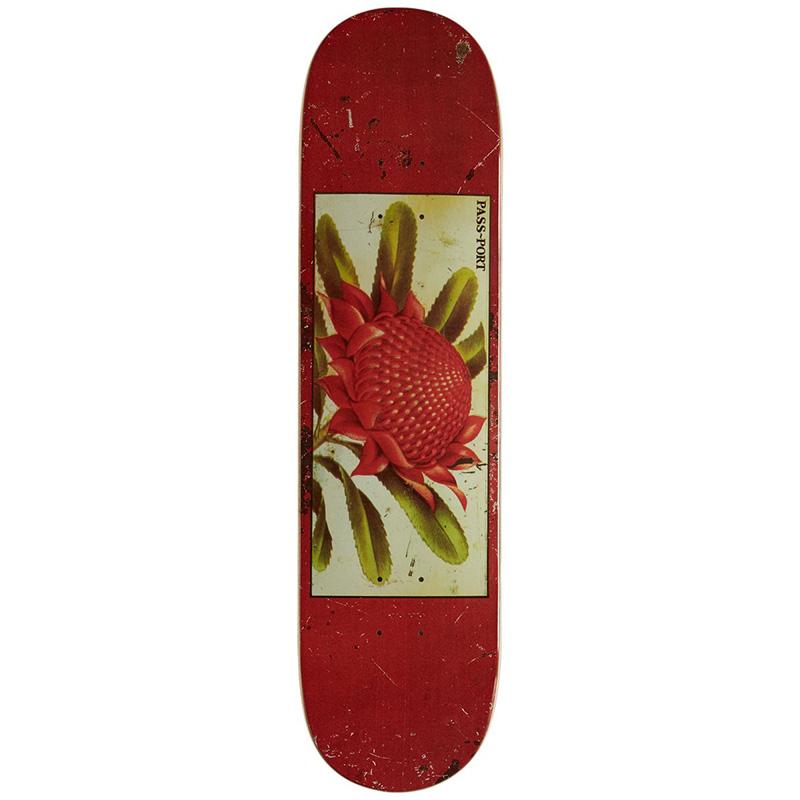 Pass-Port Tin Floral Series Waratah Skateboard Deck 7.875