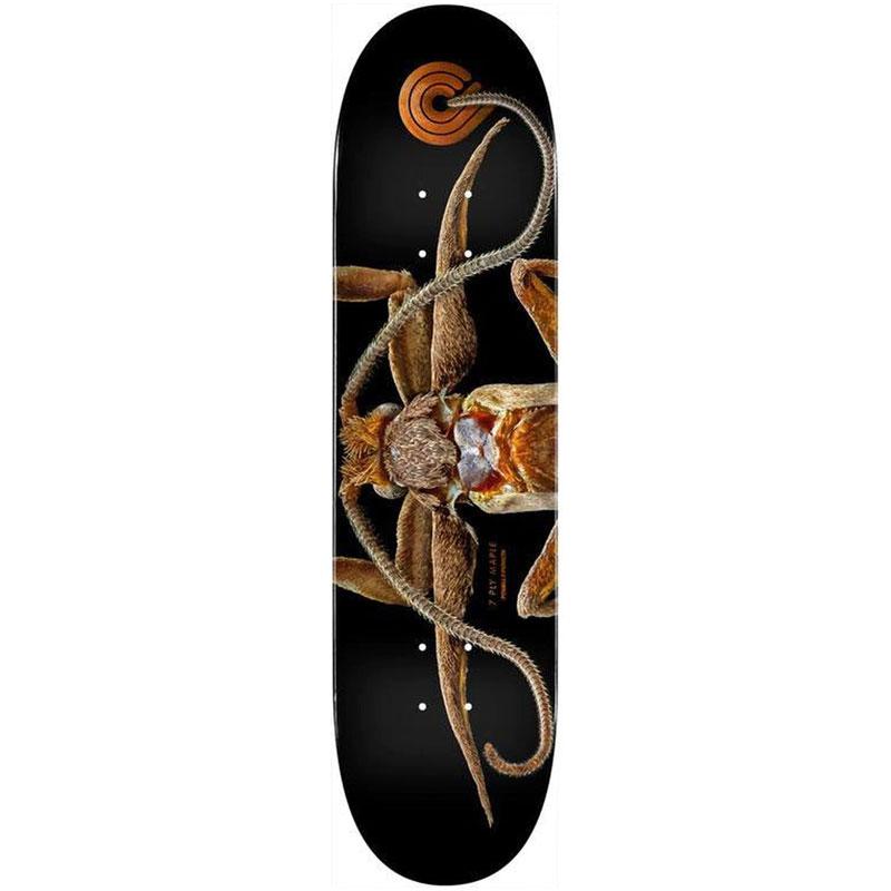 Powell Peralta Levon Biss Marion Flightless Moth Skateboard Deck Shape 243 8.25