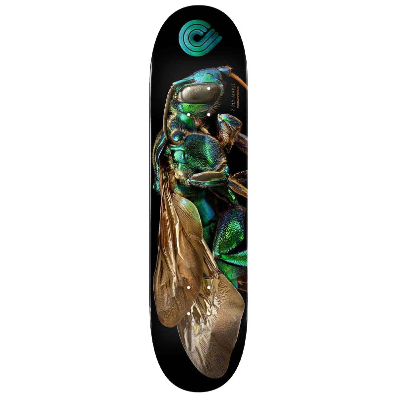 Powell Peralta Levon Biss Orchid Cuckoo Bee Skateboard Deck Shape 242 8.0