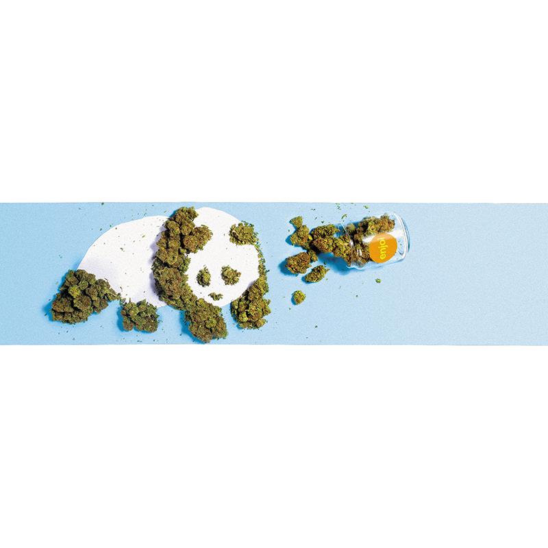 enjoi Weed Panda Griptape Sheet Blue 9.0