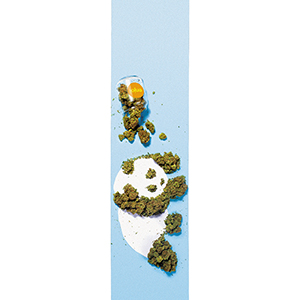 enjoi Weed Panda Griptape Sheet Blue 9.0