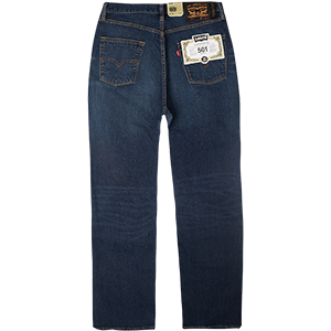 Levi's 501 Straight Fit Pants Pedro