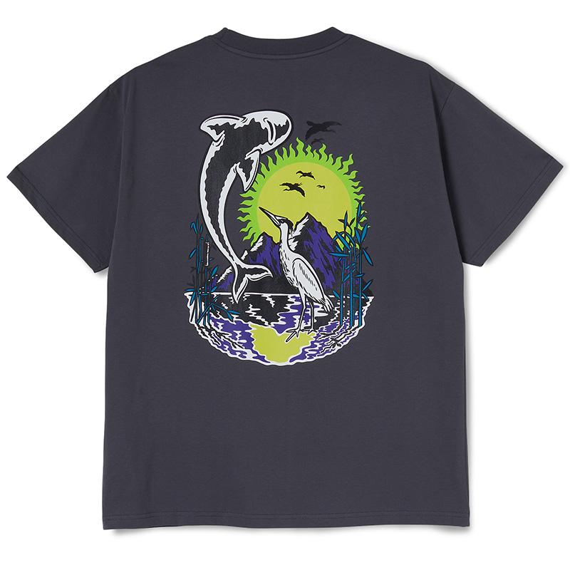 Polar Mt. Fuji T-Shirt Graphite